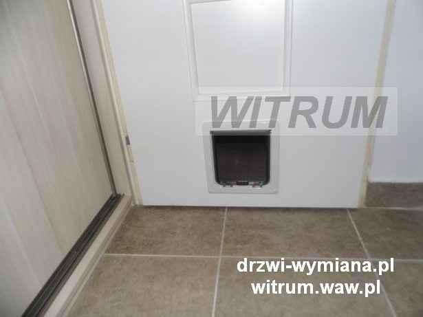 W Drzwiach Do łazienki Wejście Dla Kota Lub Psa
